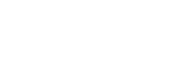 The Perfect Media