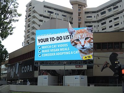 Digital Billboard Which Shows Love And Care